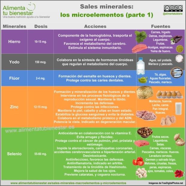 Infografía Sales minerales Microelementos I