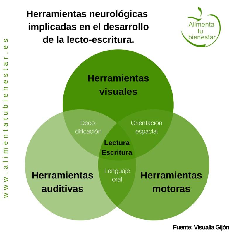 Herramientas neurológicas desarrollo de la lectoescritura