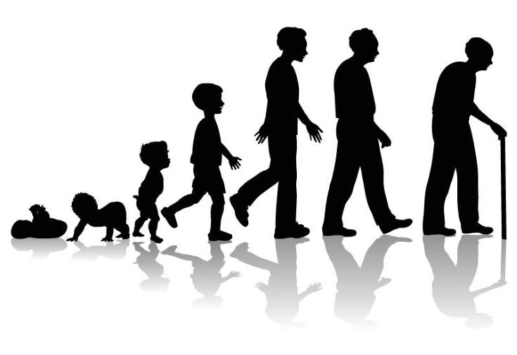 Edad biológica y edad cronológica