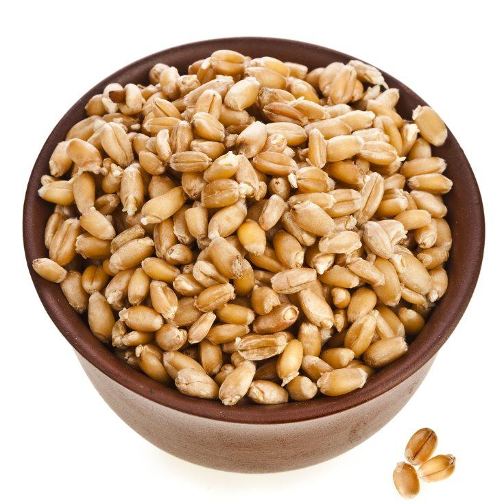 mejores cereales integrales - germen de trigo