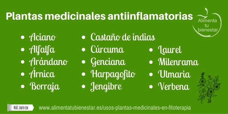 Plantas medicinales antiinflamatorias