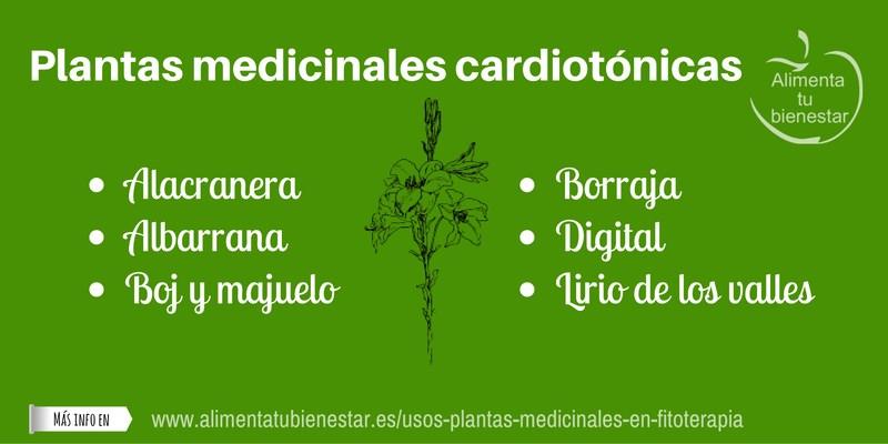 Plantas medicinales cardiotónicas