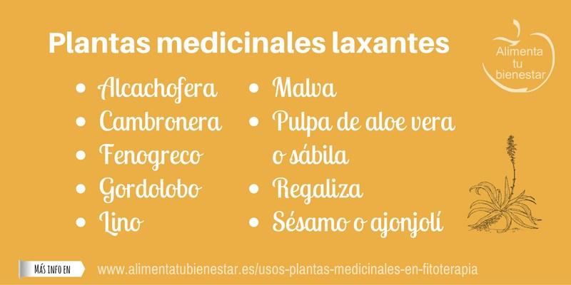 Plantas medicinales laxantes