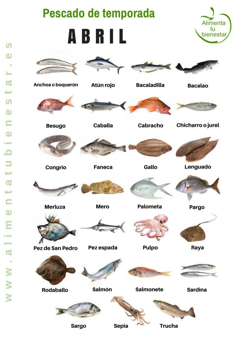 que tipos de pescados hay para comer