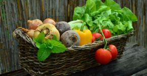 alimentos que no pueden faltar en una dieta vegana