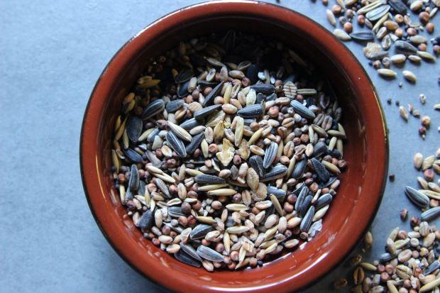 Beneficios de las semillas para la salud