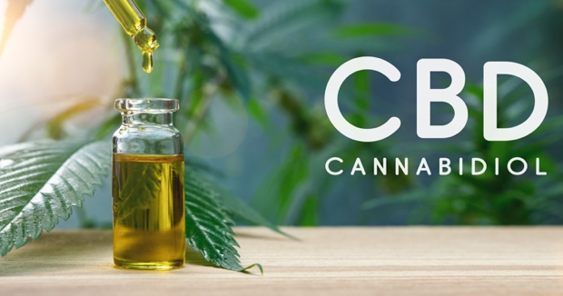 ¿Cómo funciona el aceite CBD? ¿Cuáles son sus efectos terapéuticos?