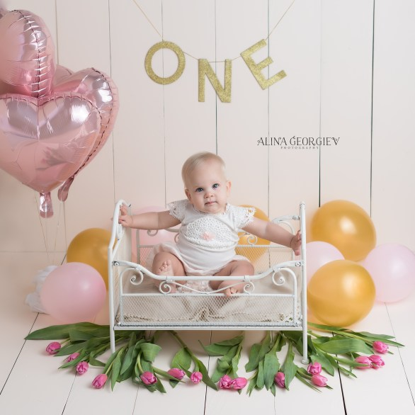 Plano-Newborn-Photographer-Baby-First-Birthday-1