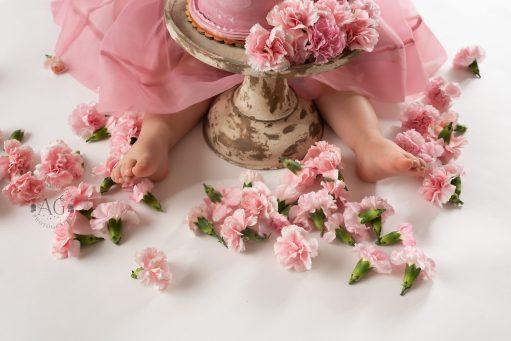 Plano-Newborn-Photographer-baby-2nd-birthday-shoot00011