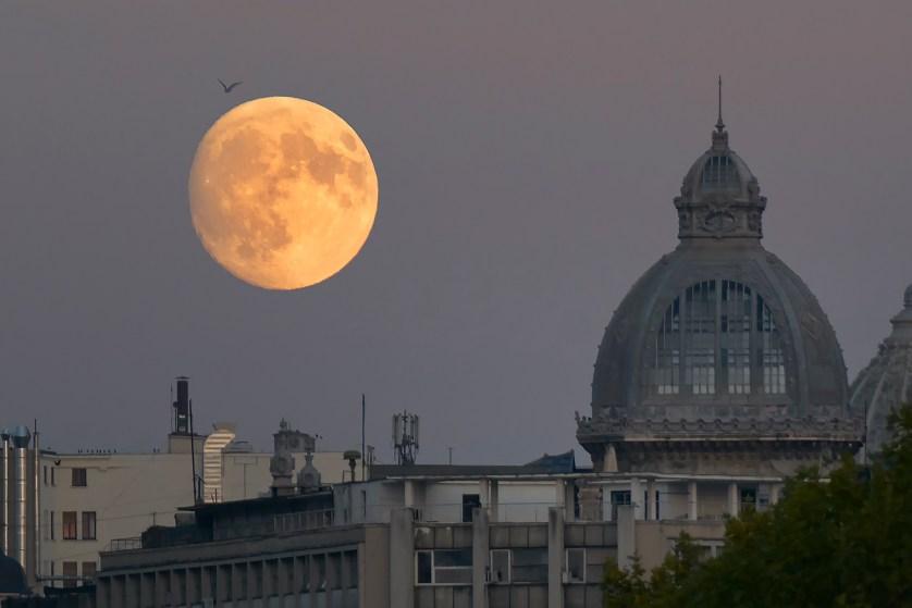 Cum fotografiezi luna