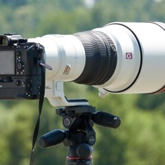 No day passes without me thinking about the Sony 400mm f/2.8 GM