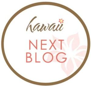 Hawaii-Next-e1428966189222