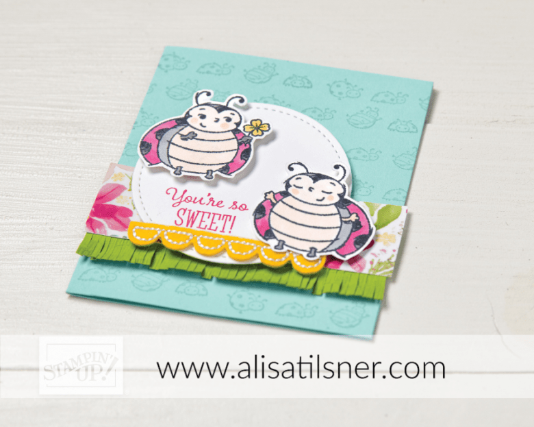 Win a Little Ladybug Stamp Set from Alisa Tilsner.  Open during January.  Australia Only