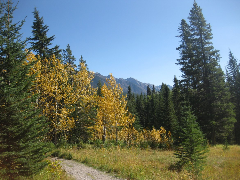 Banff Day 1 (50)