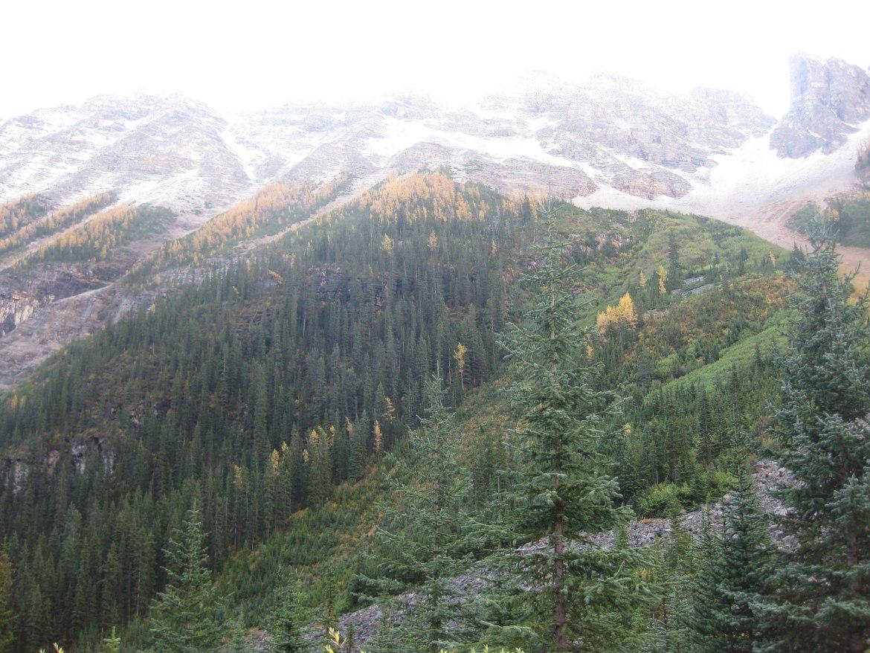Banff Day 3 (52)