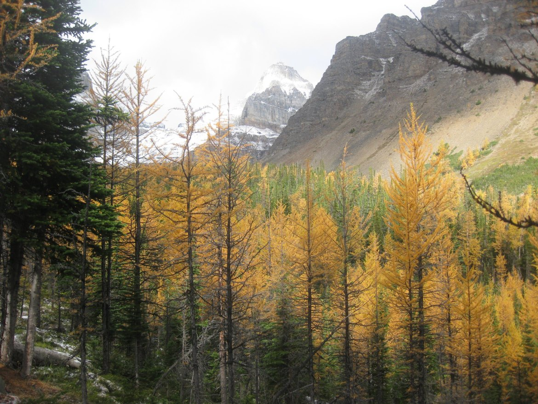 Banff Day 5 (27)