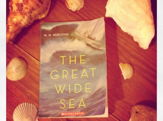 book and seashells