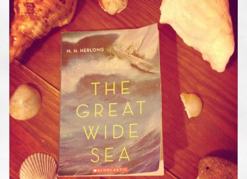 book and seashells