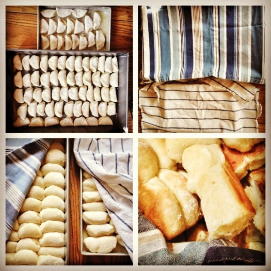 Steps to Grandmother's Homemade Rolls, Thanksgiving, Christmas
