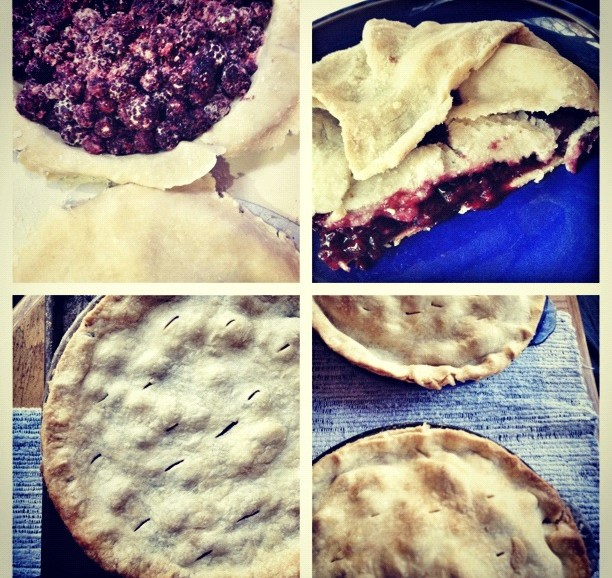 instagram of pies, pie instagram, blackberry pie, apple pie, making pie