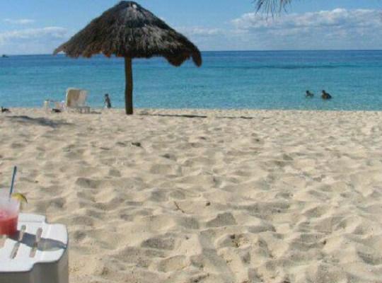 nachi cocom, cozumel, caribbean cruise