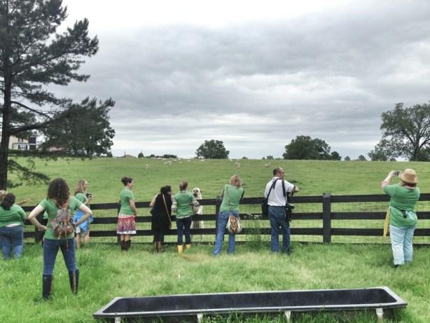 Bean2Blog, Bean2Blog 2013 with P. Allen Smith, Moss Mountain Farm, Arkansas Soybean Promotional Board, Garden Home Tour