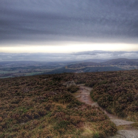 Hiking In Scotland With Kids, Bennachie In October, Aberdeenshire