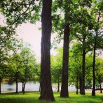 A Love Letter to Lakewood Lake