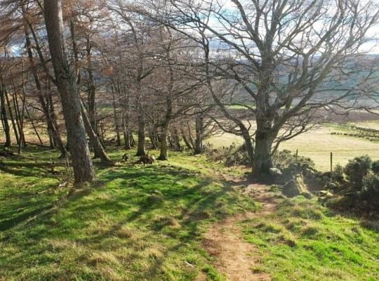 Aberdeenshire Walk, Shire, Noth o' Tap, #48walks