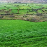 Snapshots of Ireland {County Kerry}