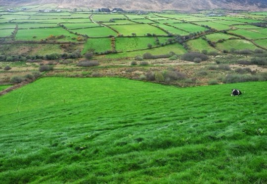 Snapshots of Ireland, County Kerry