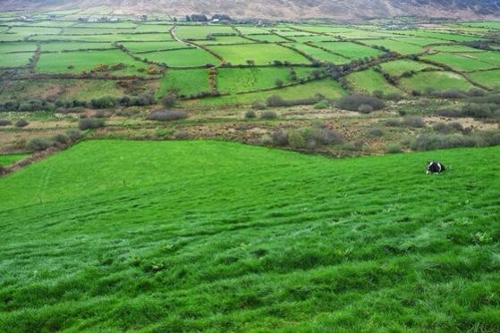 Snapshots of Ireland, County Kerry