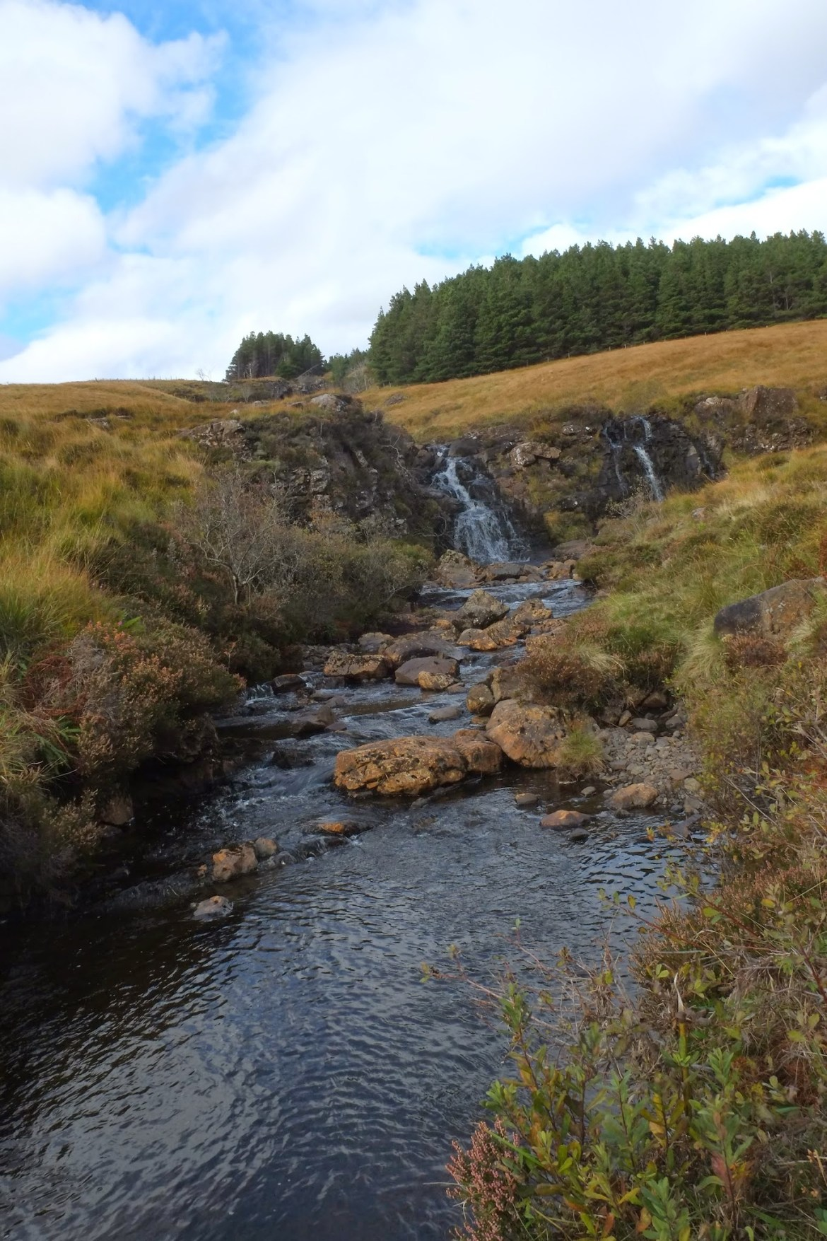 Isle of Skye (205)