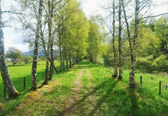 The Speyside Way, May, Chasing Daylight, MacsAdventure.com