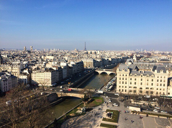 View of Paris from Notre Dame, Snapshots of Paris, Paris in Winter