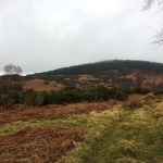 A Wet Almost-Spring Walk in Aboyne, Scotland