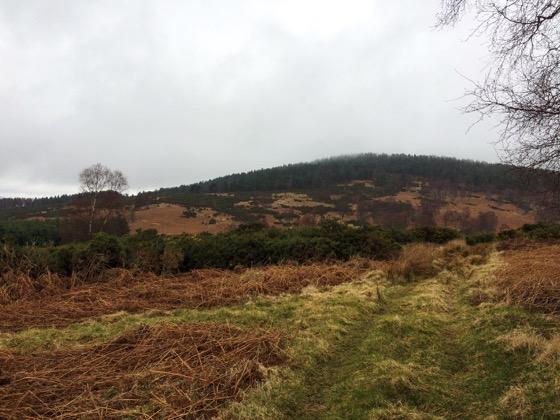 Walk in Aboyne, Scotland, Day Trips from Aberdeen
