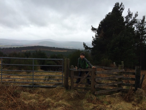 Walk in Aboyne, Scotland, Day Trips from Aberdeen