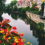 Snapshots from Tübingen: Our First Month in Germany in Photos