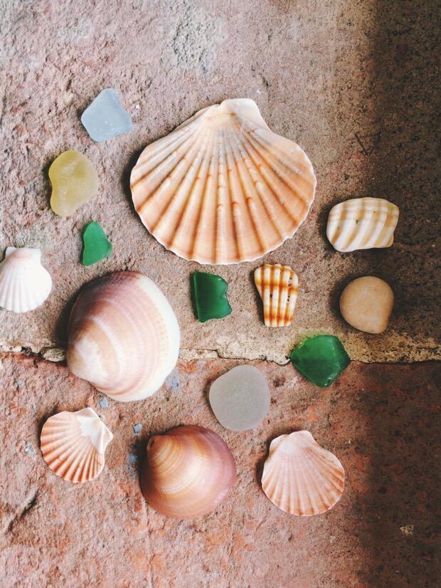 Snapshots of Ostia, Italy, Seashells and Sea Glass