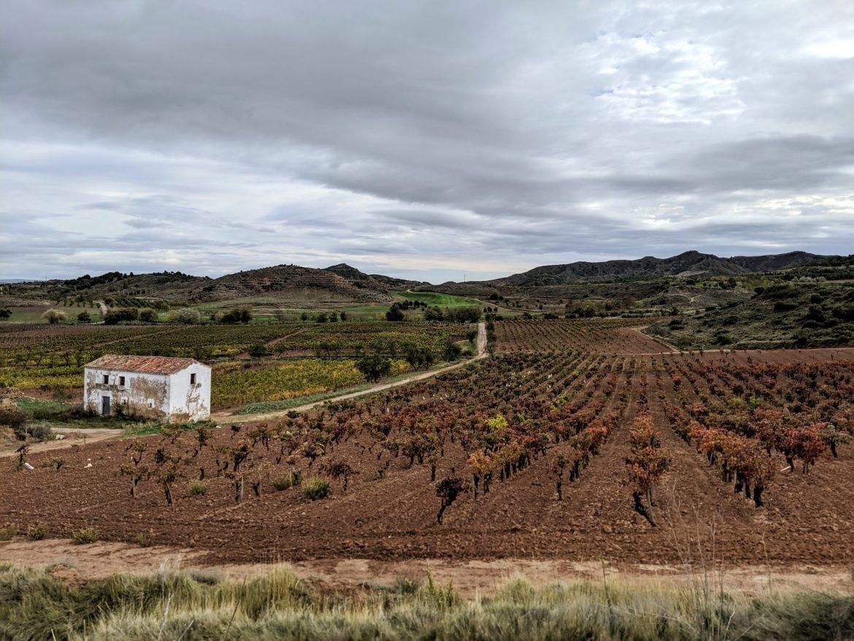 Camino IIIMG_20191106_114443