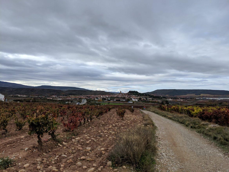 Camino IIIMG_20191106_121723