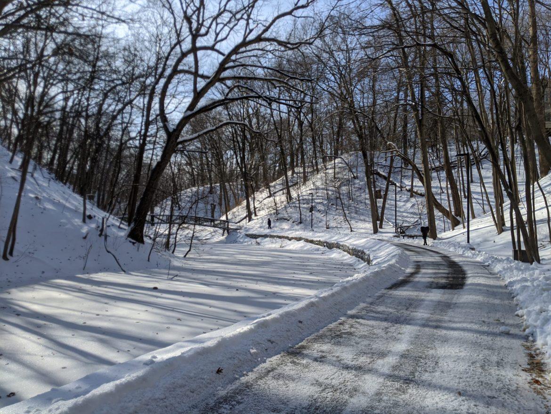 Winter in IL29