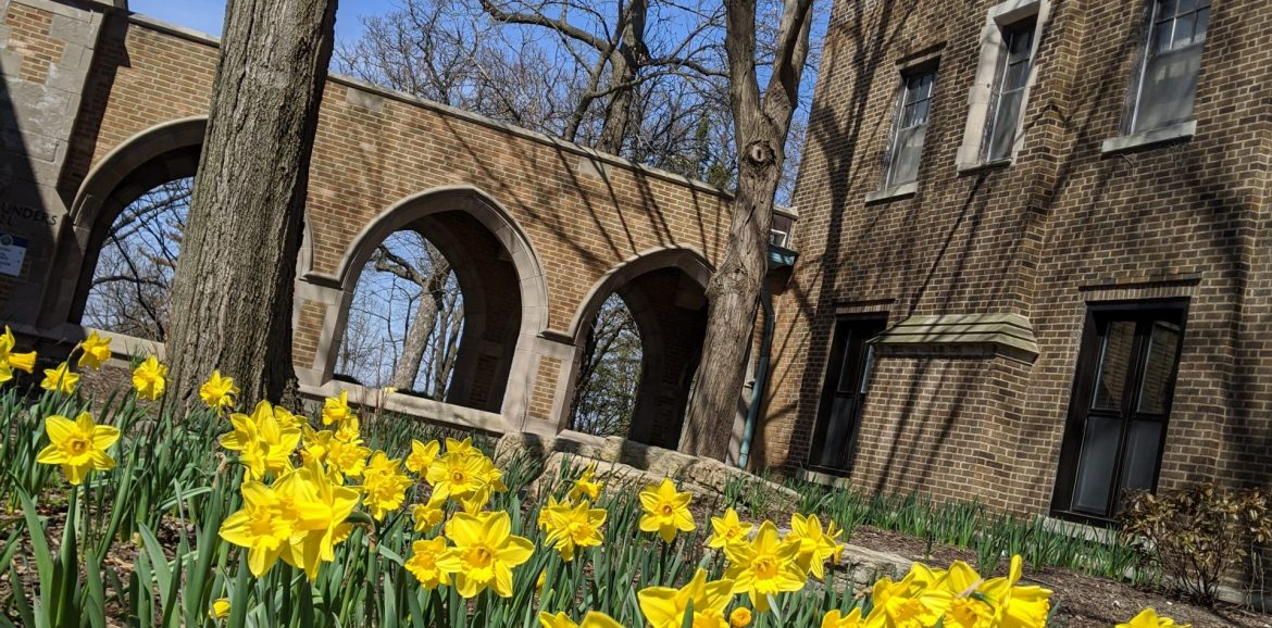 Spring at Augustana6