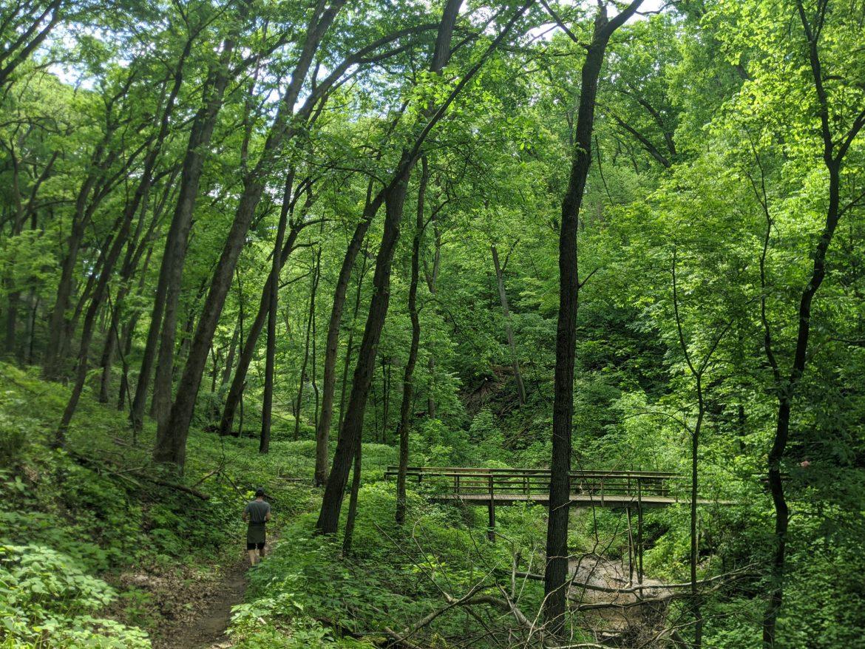 Mississippi Palisades Hiking