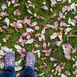 The Same Walk Every Day: Graveyard Walking