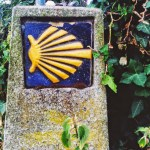 Back to the Camino
