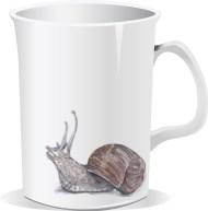 a snail on your coffee mug?!