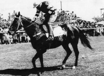 jocky sitting on horse