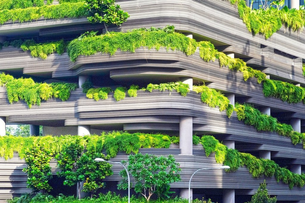 plants cascading from balconies